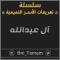 نبذة عن أسرة | آل عبدالله | في تمير .